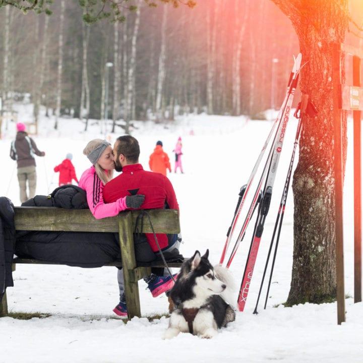 Vinterbilder 2015